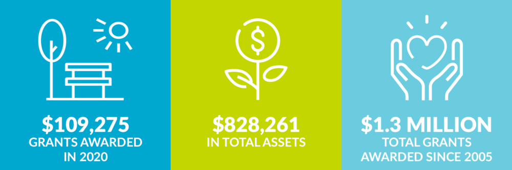 $109,275 grants awarded in 2020. $828,261 total assets. $1.3 million total grants awarded since 2005.