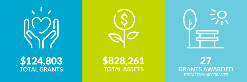 $124,803 total grants. $828,261 total assets. 27 discretionary grants awarded.