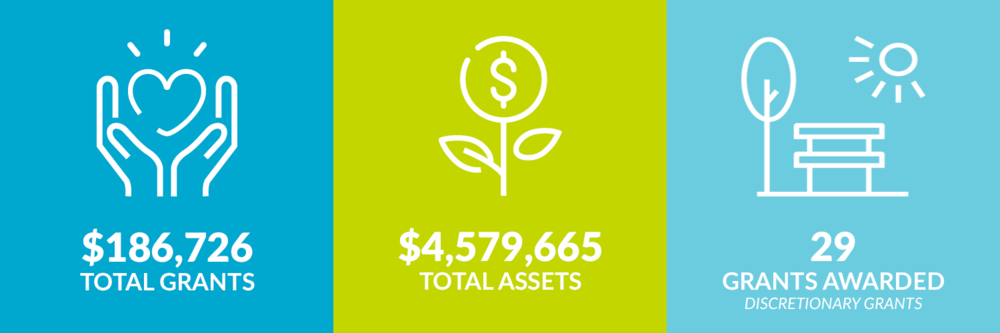 $186,726 total grants. $4,579,665 total assets. 29 discretionary grants awarded.