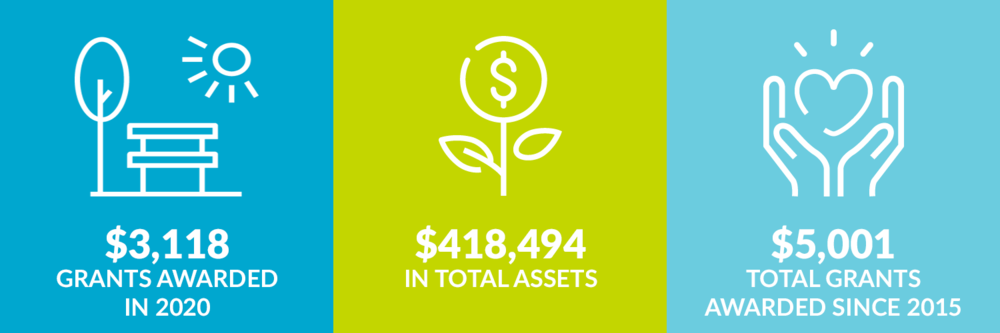 $3,118 grants awarded in 2020. $418,494 total assets. $5,001 total grants awarded since 2015.