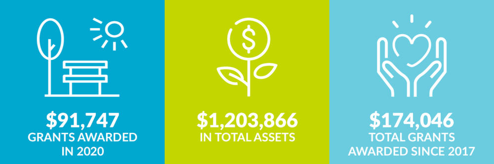 $91,747 grants awarded in 2020. $1,203,866 total assets. $174,046 million total grants awarded since 2017.