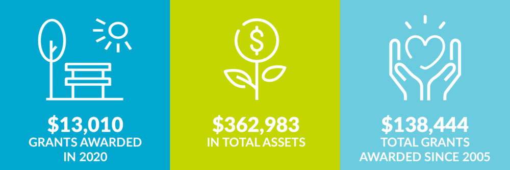 $13,010 grants awarded in 2020. $362,983 total assets. $138,444 total grants awarded since 2005.
