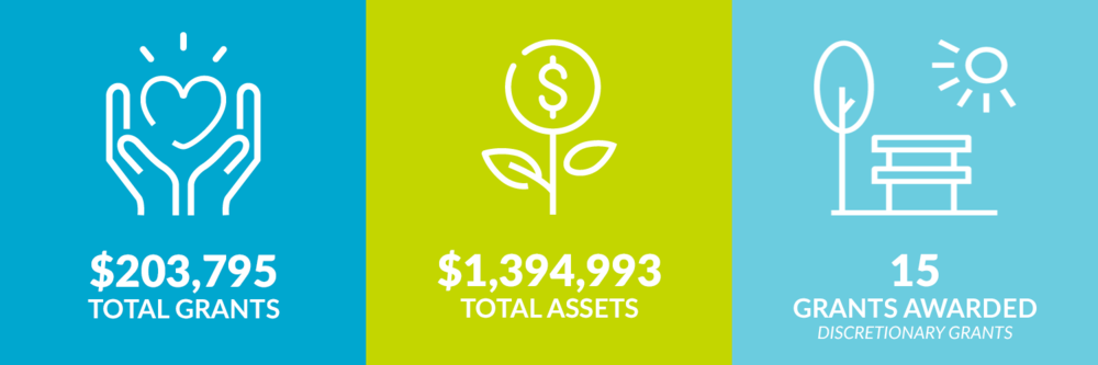 $203,795 total grants. $1,394,993 total assets. 15 discretionary grants awarded.