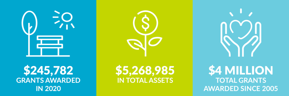 $245,782 grants awarded in 2020. $5,268,985 total assets. $4 million total grants awarded since 2005.