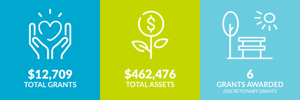$12,709 total grants. $462,476 total assets. 6 discretionary grants awarded.