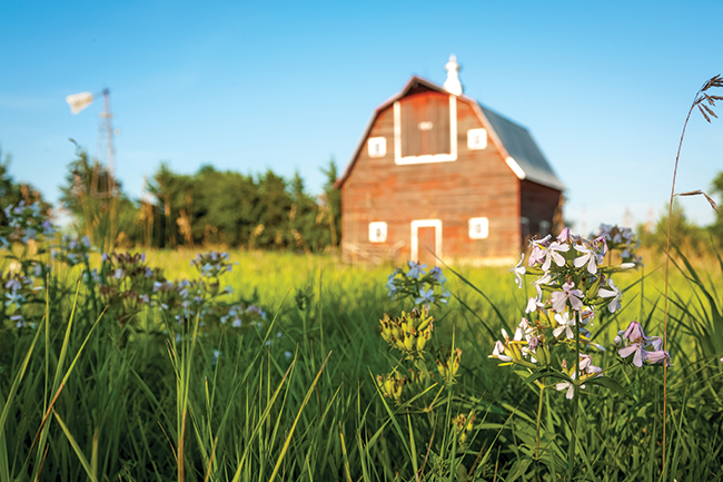 Flower barn