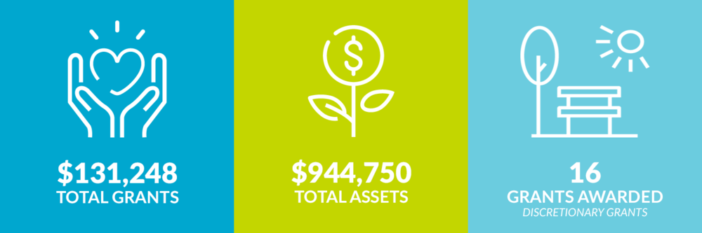 $131,248 total grants. $944,750 total assets. 16 discretionary grants awarded.