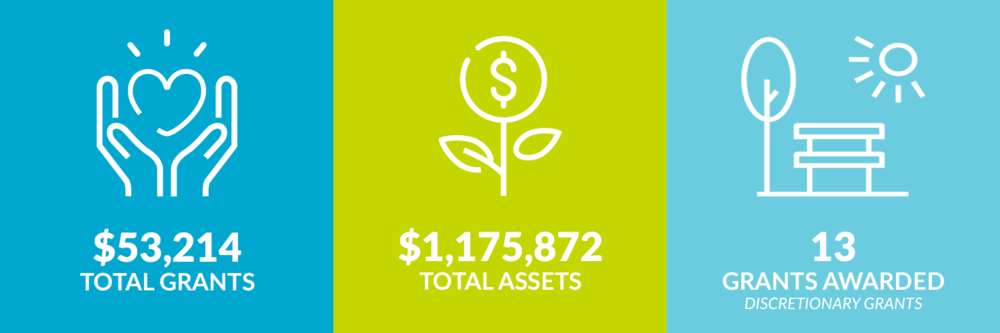 $53,214 total grants. $1,175,872 total assets. 13 discretionary grants awarded.